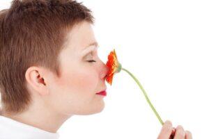 de overgang en reukvermogen, vrouw ruikt aan bloem